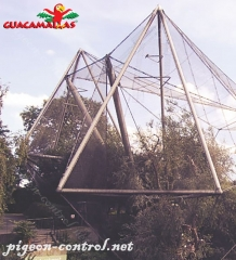 aviary triangle installed on garden for protection against birds.