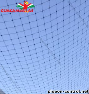 Pigeon mesh installed in a field of crops